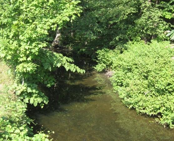 The peaceful stream that runs through the farm