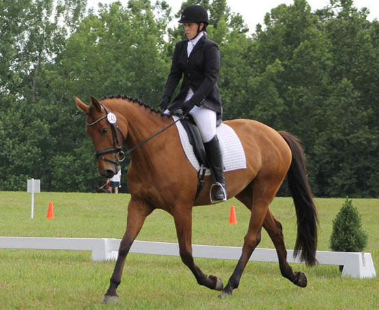 Cece and Mystery in competition